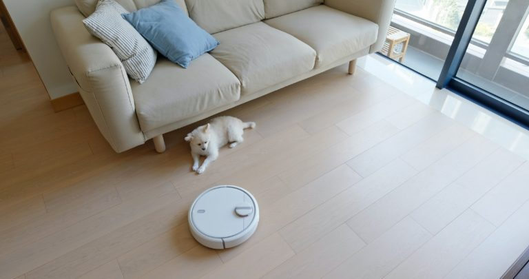 Robot vacuum operating in a small apartment while dog is watching