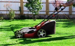 Electric lawn mower being used in a small yard