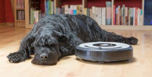 Robot vacuum cleaning the floors with a black haired dog laying next to it