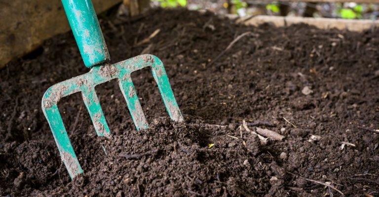 Pitchfork buried in a homemade compost pile