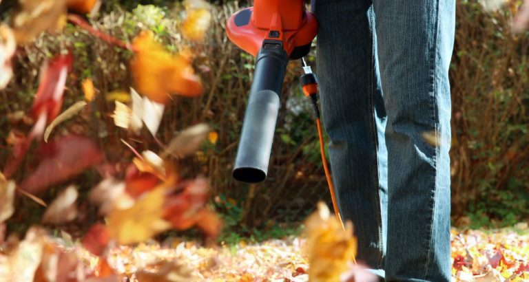 Man blowing autumn leaves in his yard
