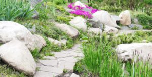 Beautiful rock landscape with flowers and greenery