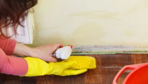 Woman cleaning a dirty nicotine stained wall with a yellow sponge and spray cleaner