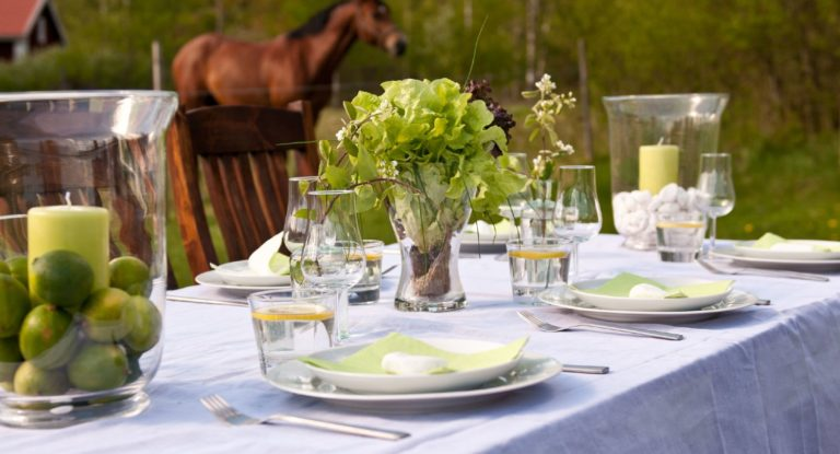 Beautiful table setting with a white tablecloth and porcelain set up outside with a horse in the background